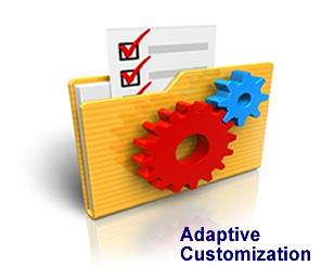adaptive customization